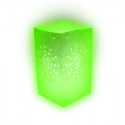 Lanterne papier verte (x10)