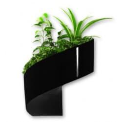 pots de fleurs mural design et d coration v g tale pr t jardiner. Black Bedroom Furniture Sets. Home Design Ideas