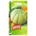 Graines de Melon Cavaillon