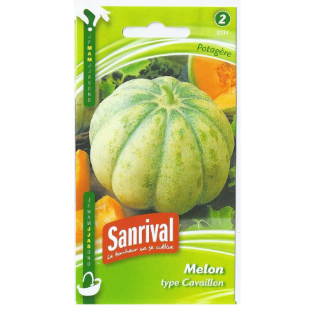 Graines de Melon Cavaillon