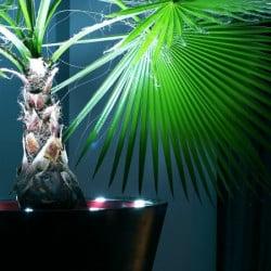 Pot de fleur design à LED Open M 80 cm