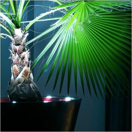 Pot de fleur lumineux LED 80 cm