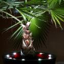 Pot de fleur design à LED Open L Double 120 cm