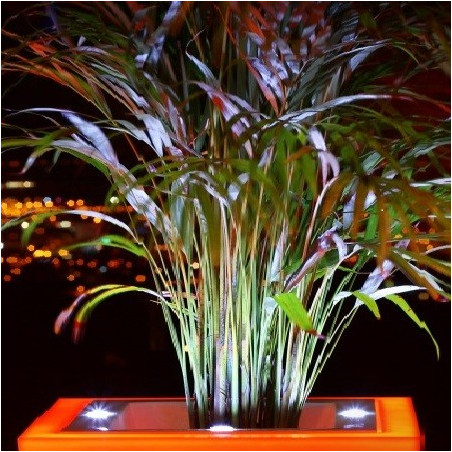 Pot de fleur design à LED Square 60 cm