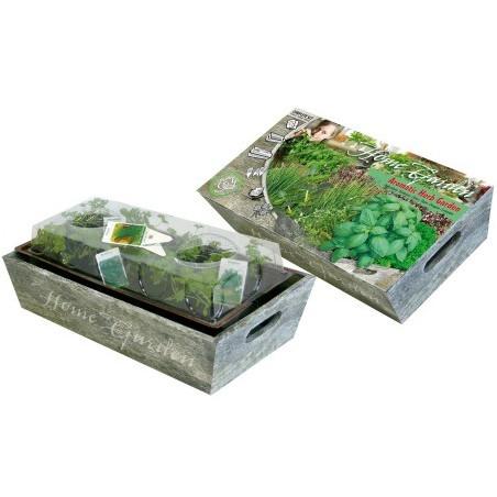 Mini Jardin d'herbes aromatiques