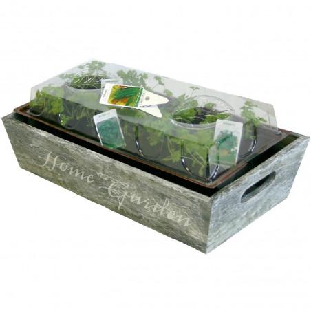 Mini Jardin herbes aromatiques