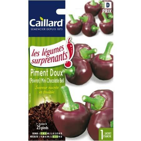 Piment Doux mini Chocolate