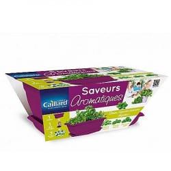 Kit Jardinière Saveurs Aromatiques