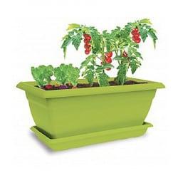 Jardinière Apéro d'été