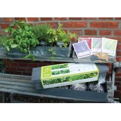 Jardinière 4 Aromatiques