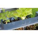 Jardinière Herbes et Légumes Balcons