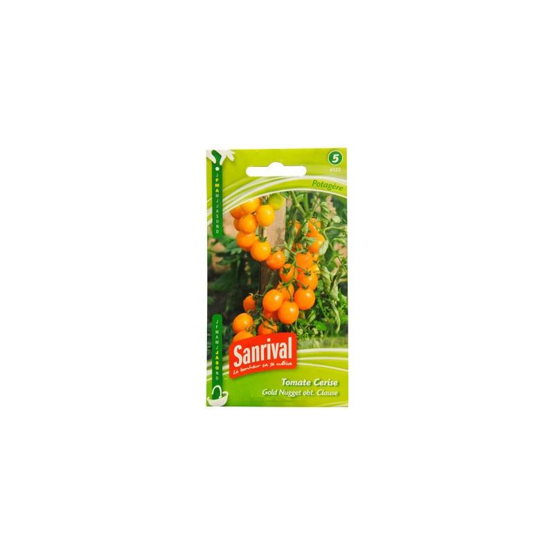 Graines Tomate Cerise BIO Jaune Gold Nugget