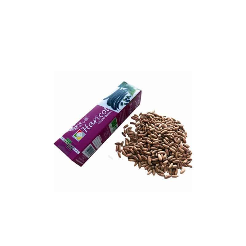 Boite de Graines d'Haricots Bio Purple Queen