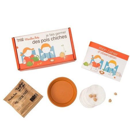 Kit de germination Pois Chiche pour enfants