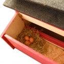 Poulailler Découverte naturel 1 à 4 poules
