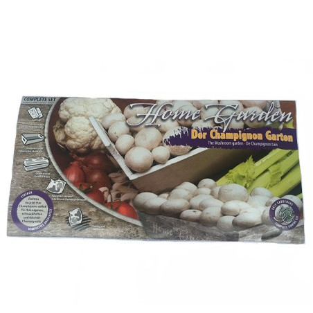 Kit champignons à la maison