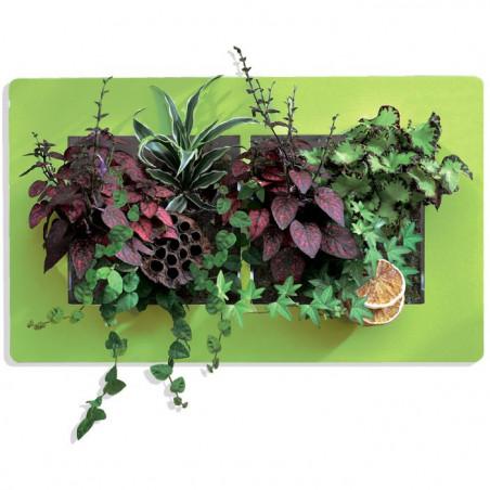 Cadre Végétal Mural Double - Vert H