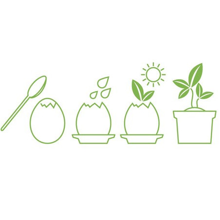 Œuf Kit Cactus