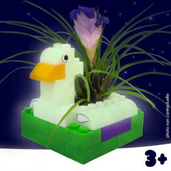 Cache pot Canard Phosphorescent