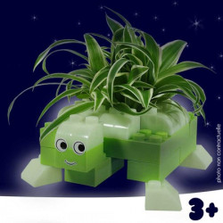 Cache pot Tortue Phosphorescent