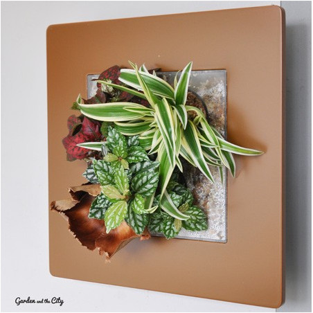 Cadre Végétal Mural - Caramel