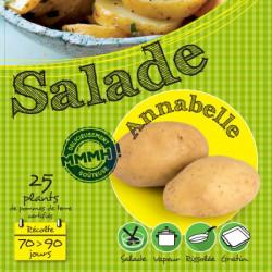 Annabelle 25 Plants de pomme de terre