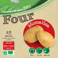Monalisa Biologique 25 Plants de pomme de terre