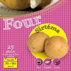 Sirtéma 25 Plants de pomme de terre