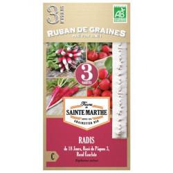Ruban de Graines de Radis en mélange Bio