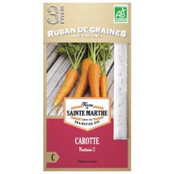 Ruban de Graines de Carotte de Chantenay Bio
