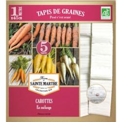 Tapis de Graines de Carottes Bio