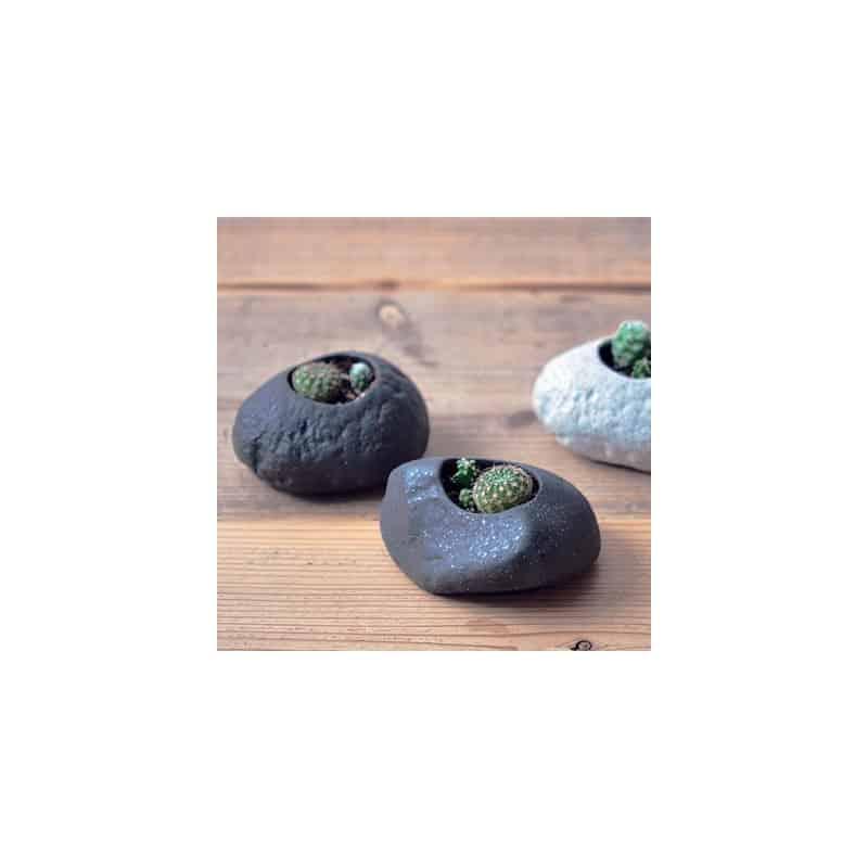 Kit Cactus en pierre