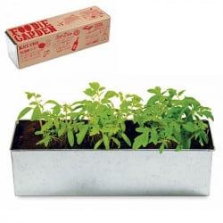 Jardinière Tomates