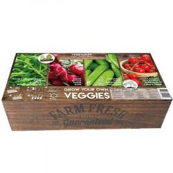 Carré de Potager Légumes avec mini serres