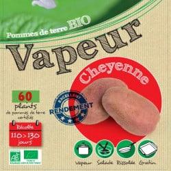Cheyenne Biologique (Chair rose) 60 Plants de pomme de terre
