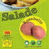 Rosabelle Rouge 100 Plants de pomme de terre