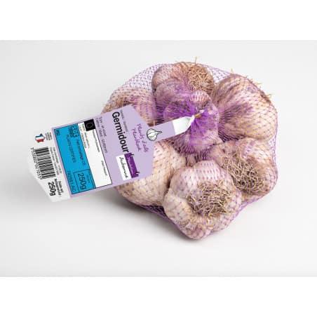 GERMIDOUR Violet Ail a repiquer 500 gr