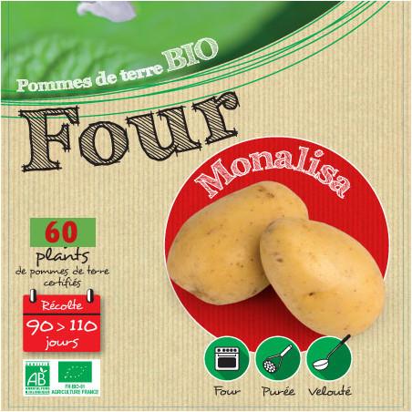 Monalisa Biologique 60 Plants de pomme de terre