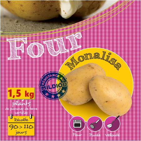 1,5 kg de Plants de pomme de terre Monalisa