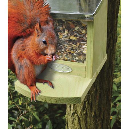 Nourriture écureuil 500 grammes