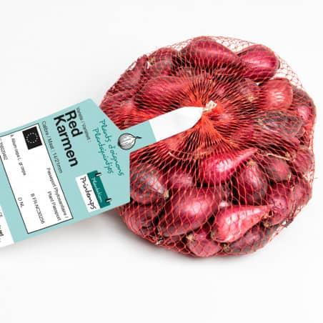 Red karmen (rouge) Bulbes d'Oignons a repiquer 500gr