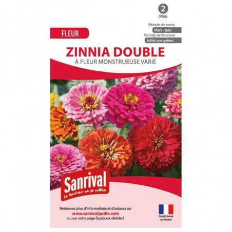 Graines de Zinnia Double varié
