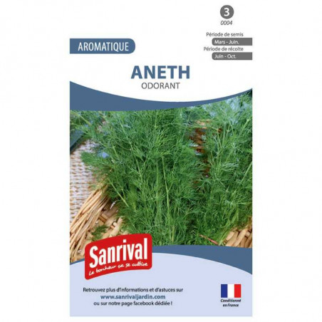 Graines aromatiques d'Aneth