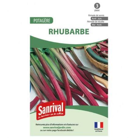 Graines de rhubarbe