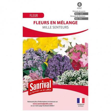 Mélange de fleurs odorantes