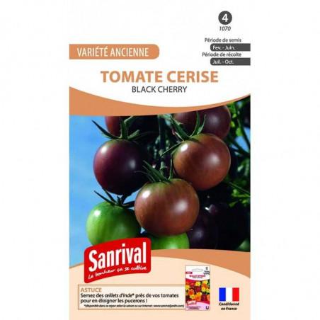 Graines Tomate Cerise Noire Black Cherry