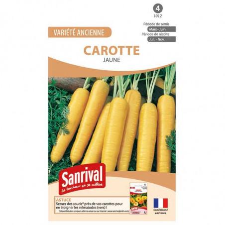 Graines Carotte Jaune