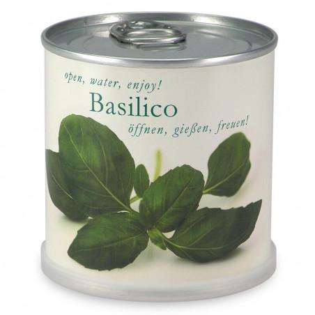 Basilic à faire pousser en boite