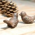 Boite Oiseaux de l'amour