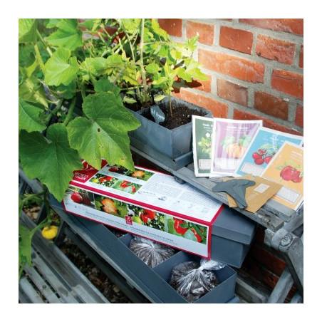 Jardinière Fruits et  Légumes